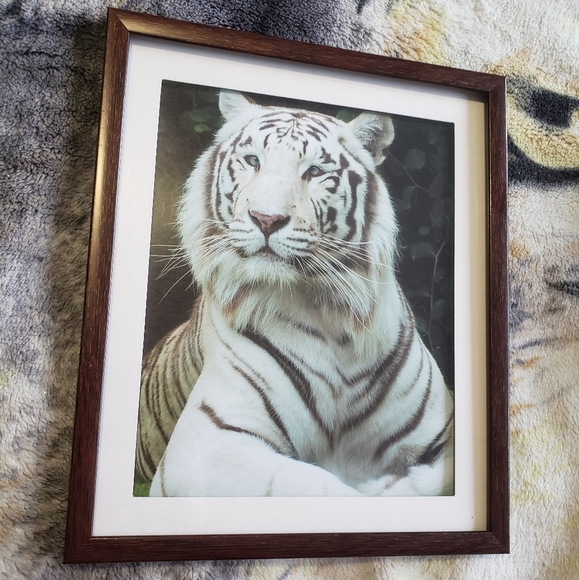 🥳buy1get1free🥳White tiger art portrait